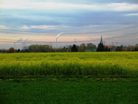 Feld-Fabrik-Energie
