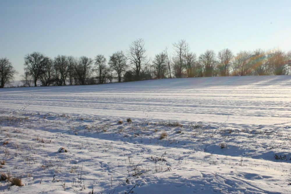 Feld im Schneekleid
