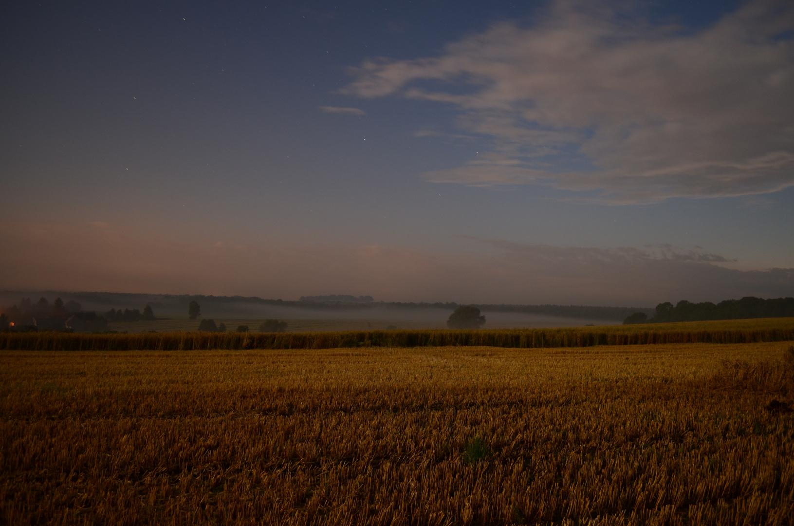 Feld in einer hellen Nacht