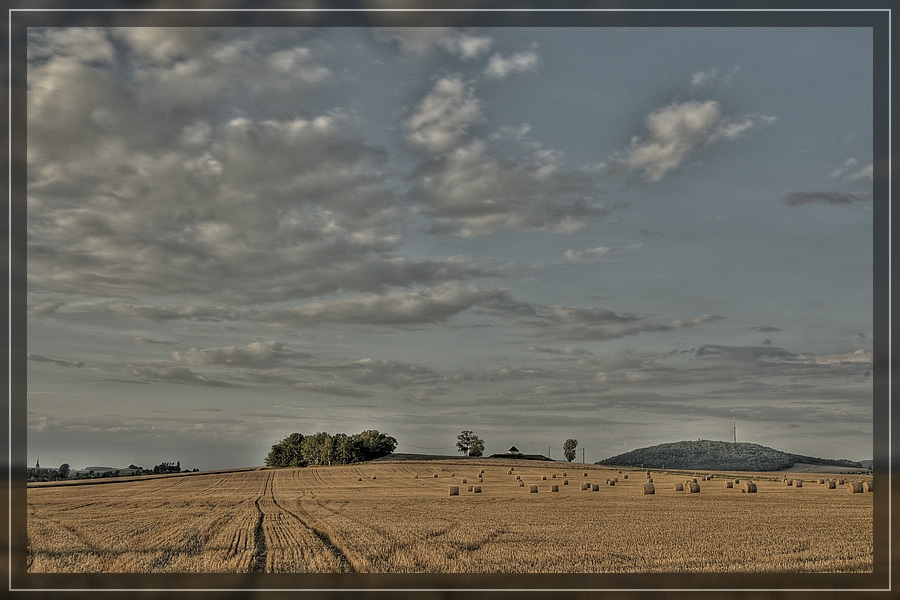 Feld nach der Ernte