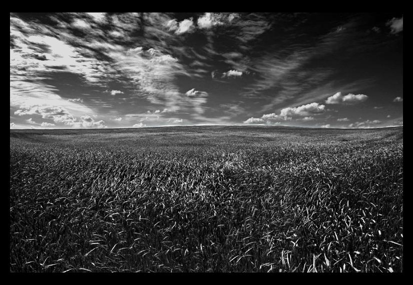 Feld und Wolken