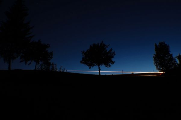 Feldarbeit bei Nacht (Sommer 2011)