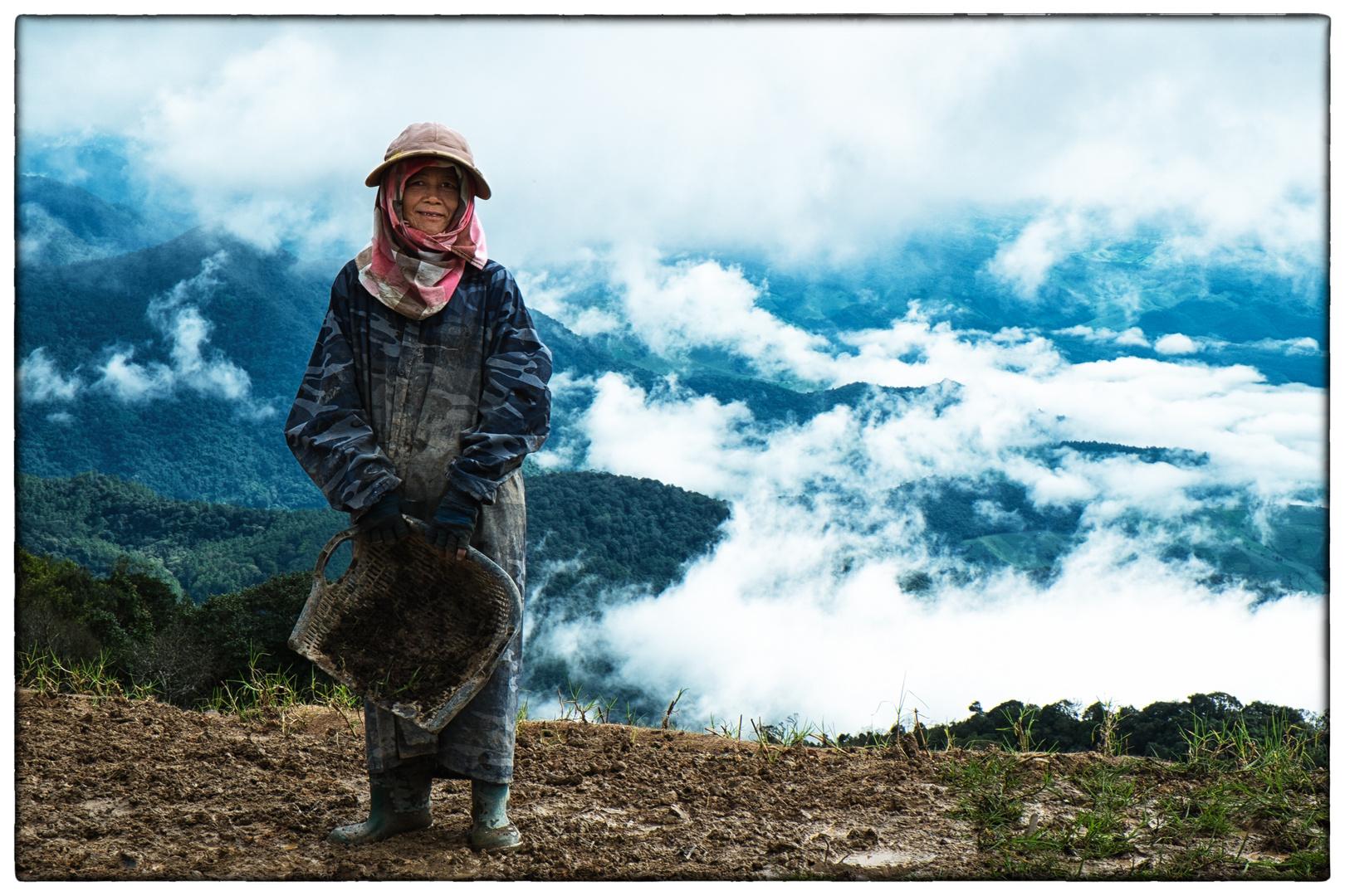 Feldarbeiten in den Gebirgen um Chiang Mai, Thailand