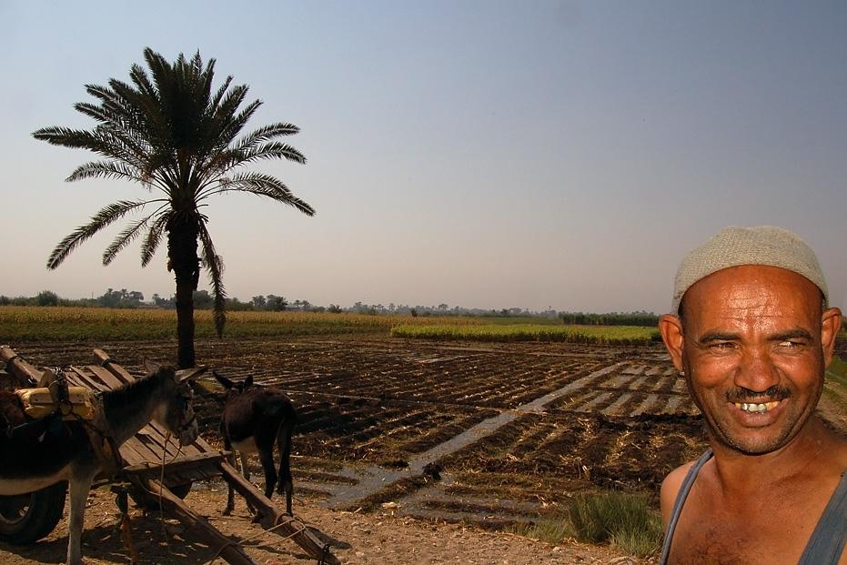 Feldarbeiter im Süden von Ägypten