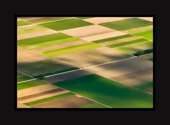 Felder im Mittelland