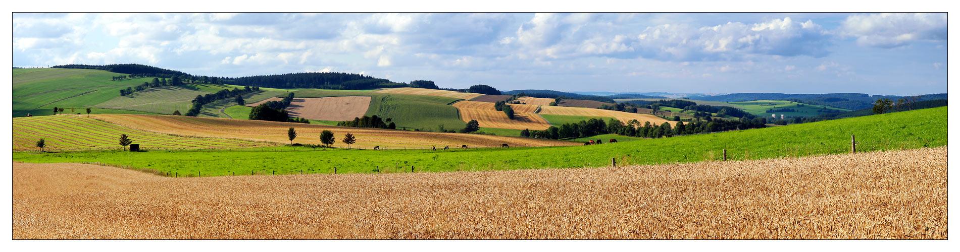 Felder, Wiesen und Wälder ... #3
