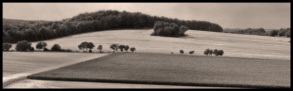Felderlandschaft in Sepia