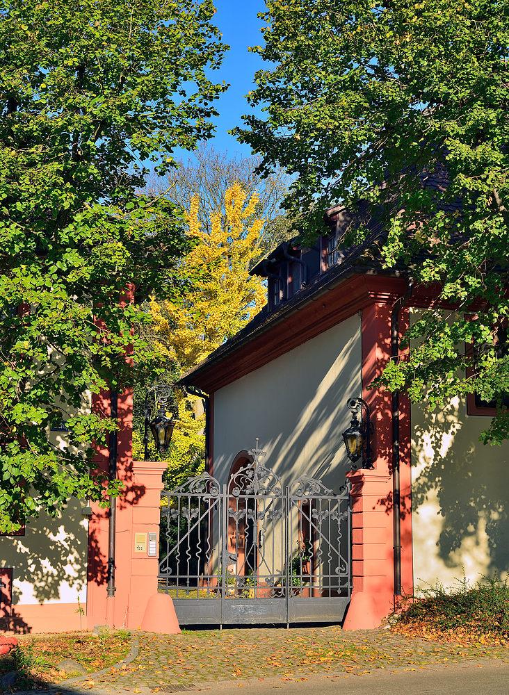 Feldkirch b. Bad Krozingen