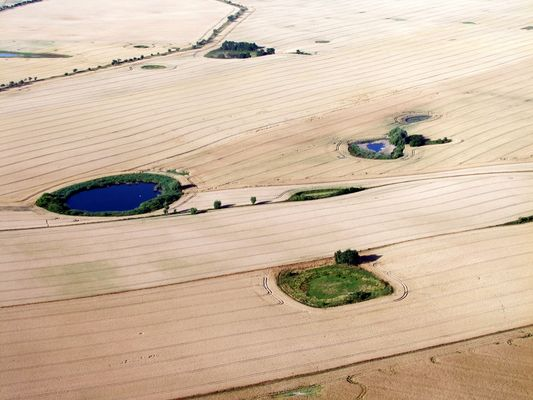 Feldlandschaft 1