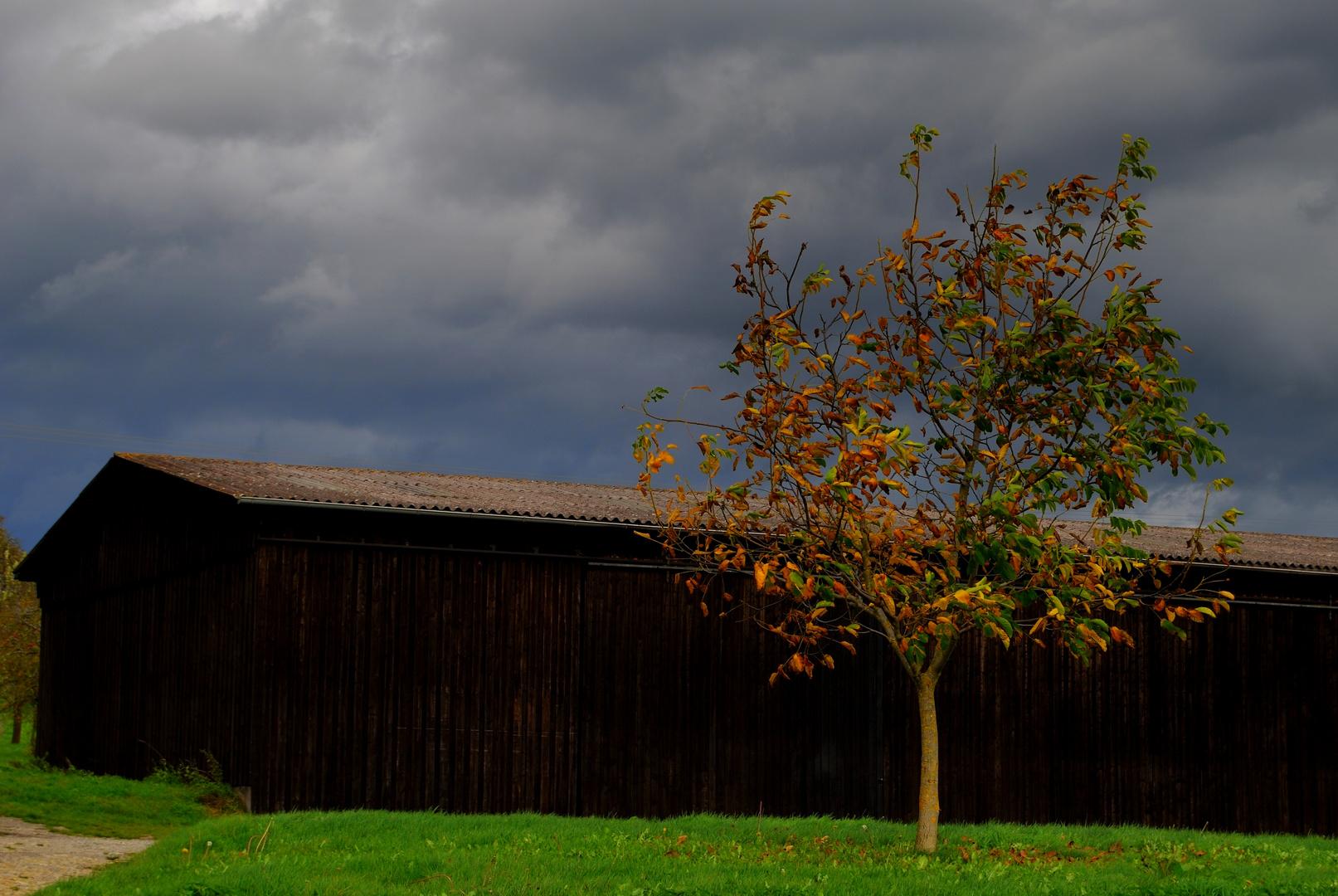 Feldscheune im Herbst
