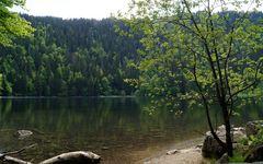 Feldsee (2)
