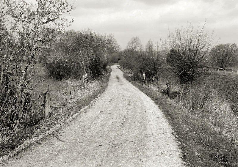 Feldweg bei Barntrup