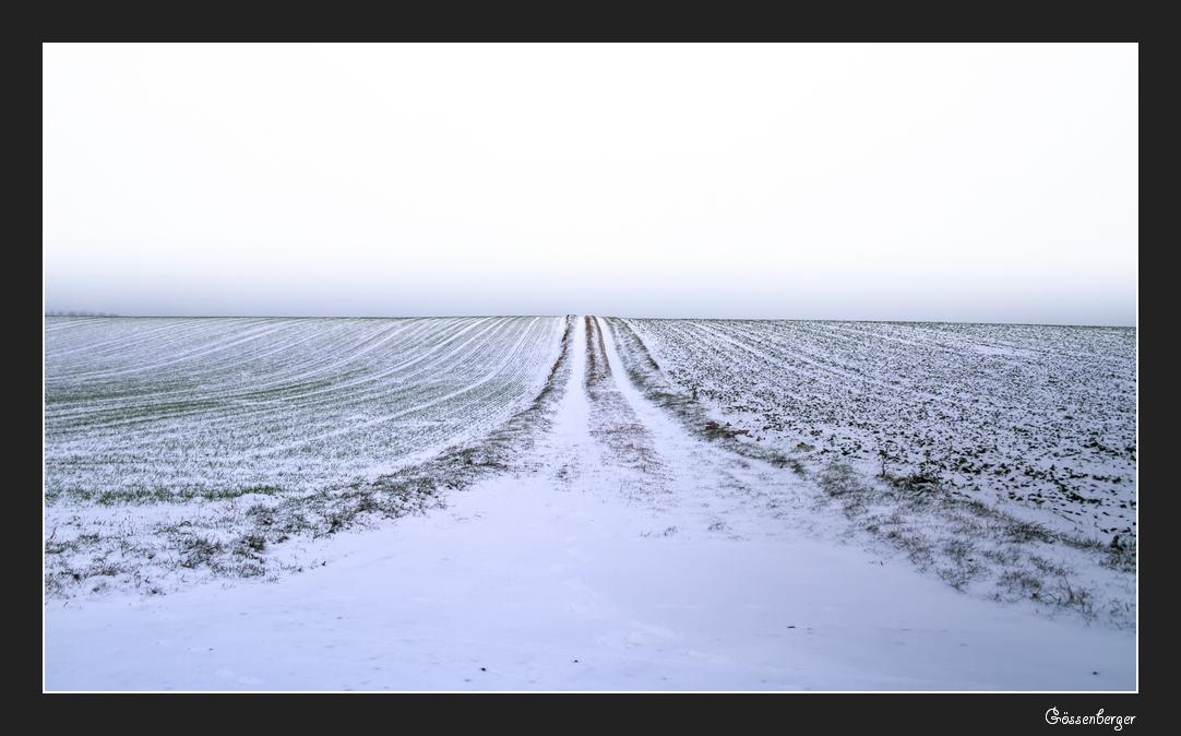 Feldweg XXIX