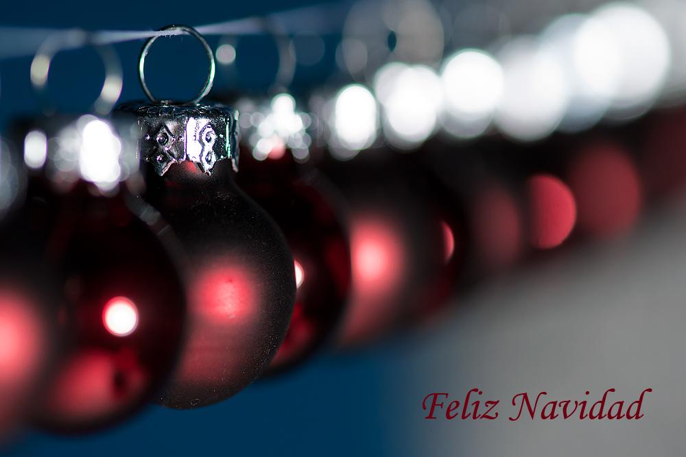 Felices Fiestas 2011