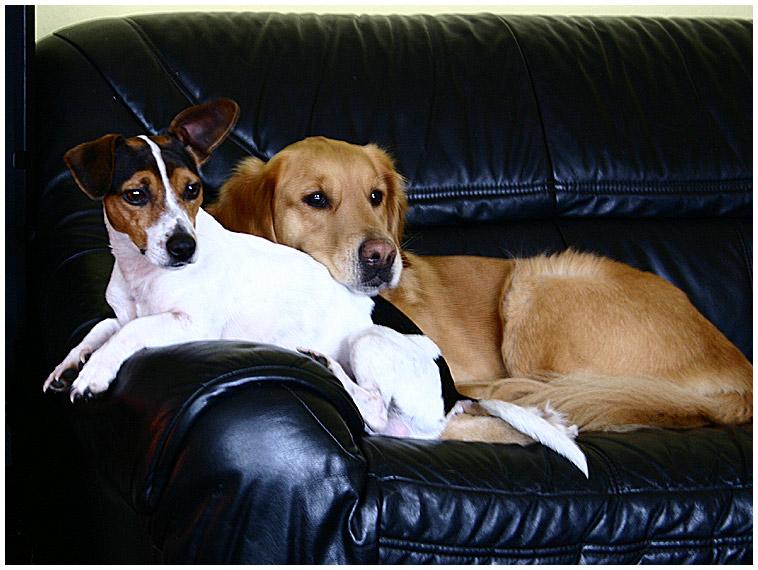 Felix und Sindie bei ihrer..........