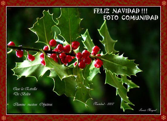 FELIZ NAVIDAD - FC