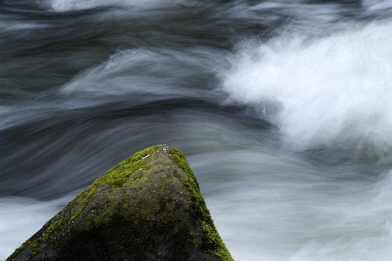 Fels im Fluß
