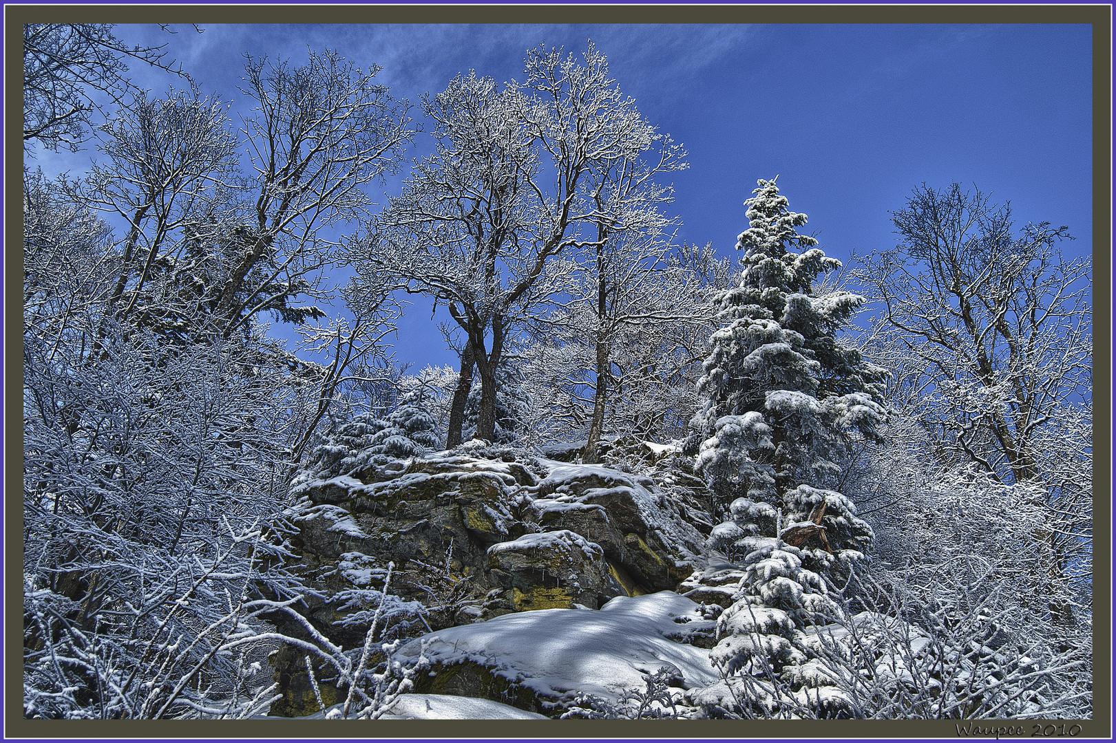 Fels im Winter