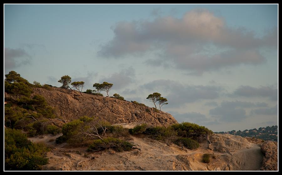 Felsen auf Mallorca (Paguera)