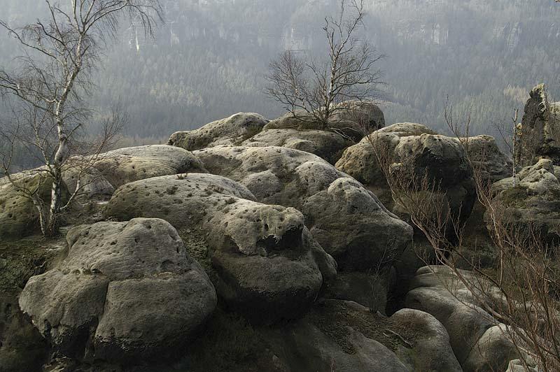 Felsen und Bäume