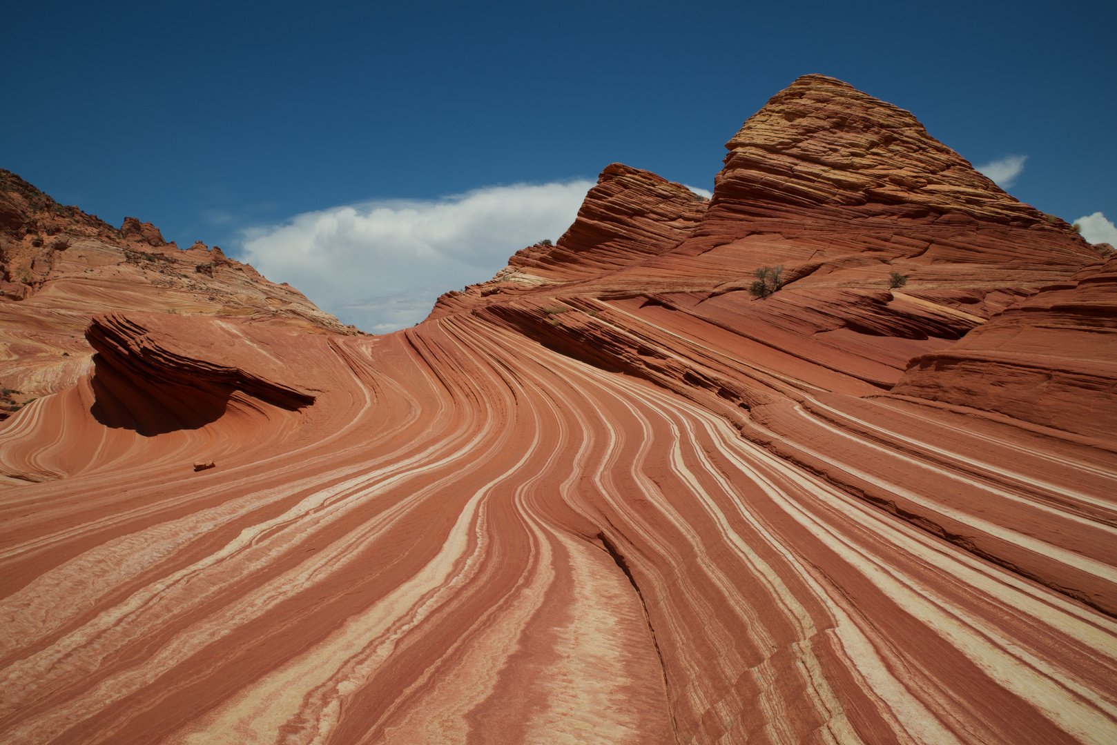 Felsformation in den Coyote Buttes North