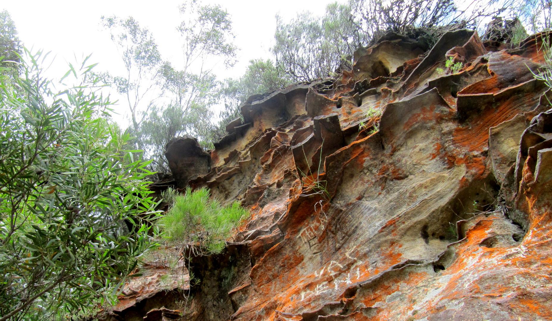 Felsformationen an der Southcoast - Australien
