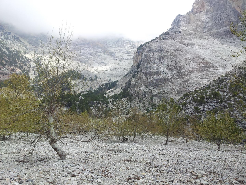 Felsige und Steinige Landschaft...