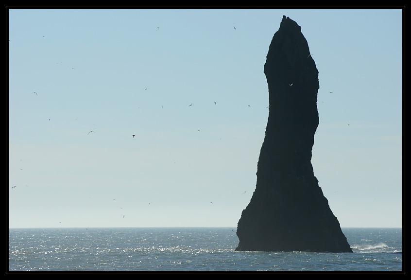 Felsnadel am Kap Dyrhólaey
