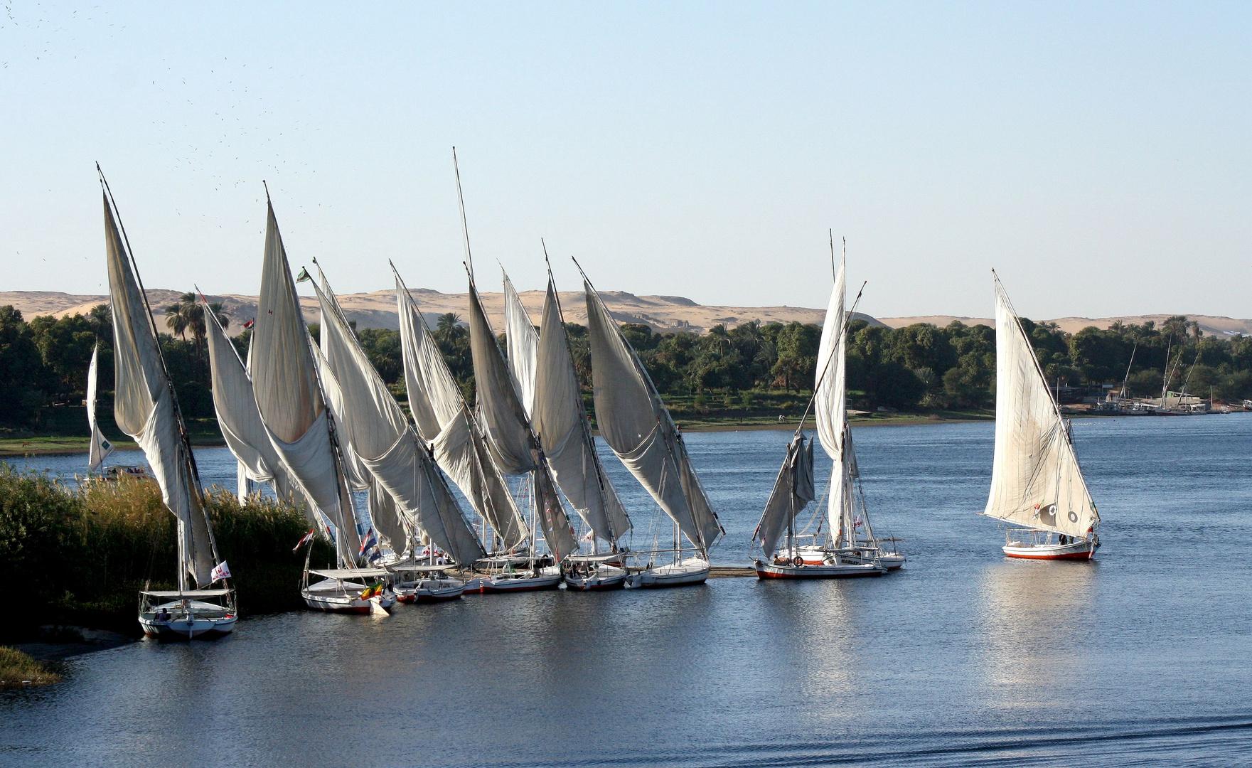 Felucken auf dem Nil bei Assuan