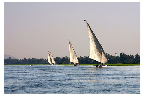 Felukken (Dschunken) auf dem Nil