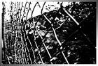 .fence