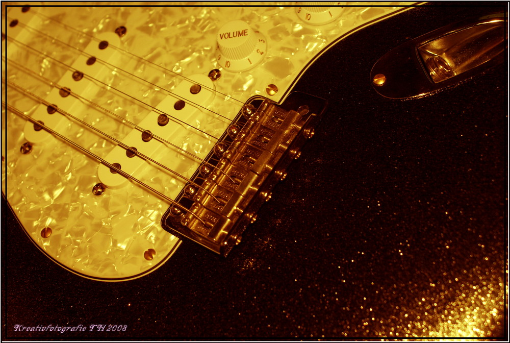 Fender Stratocaster Texas Special Unicat