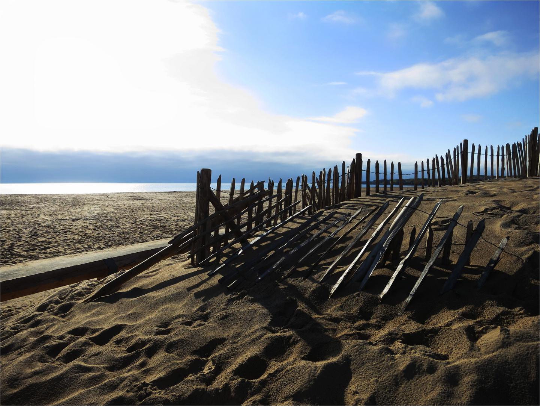Fense on the beach