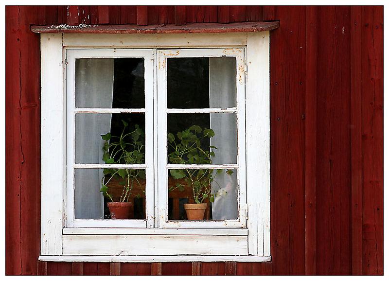Fenster (3)
