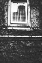 Fenster der Hilflosigkeit