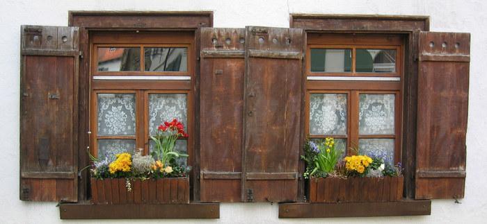 ...Fenster...