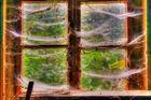 *** Fenster gewebt ***