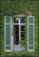 Fenster im Grünen