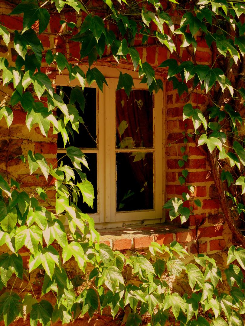 Fenster im Sonnenschein