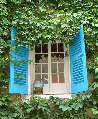 Fenster in Calvi