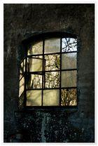 Fenster ins Haus