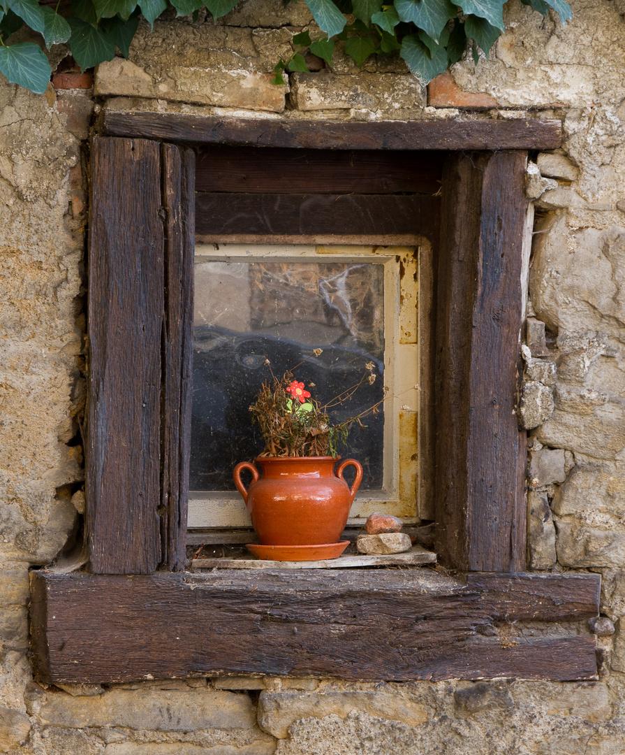Fenster mit Blumentopf