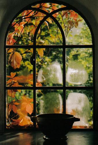 Fenster mit Herbstlaub reload
