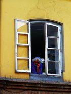 Fenster mit Mann, stachlige Aussicht