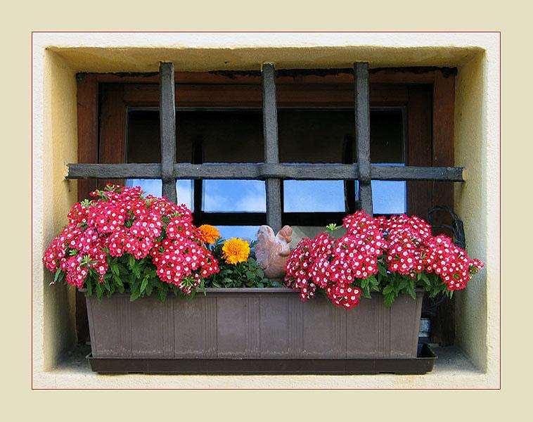Fenster Nr. 4