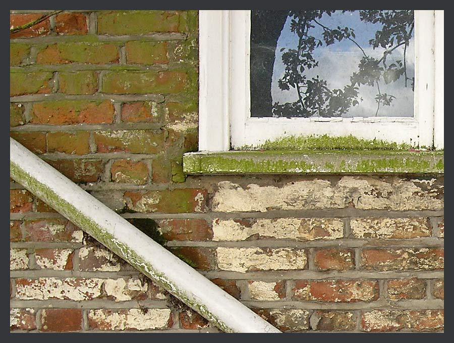 Fenster (Viertel)