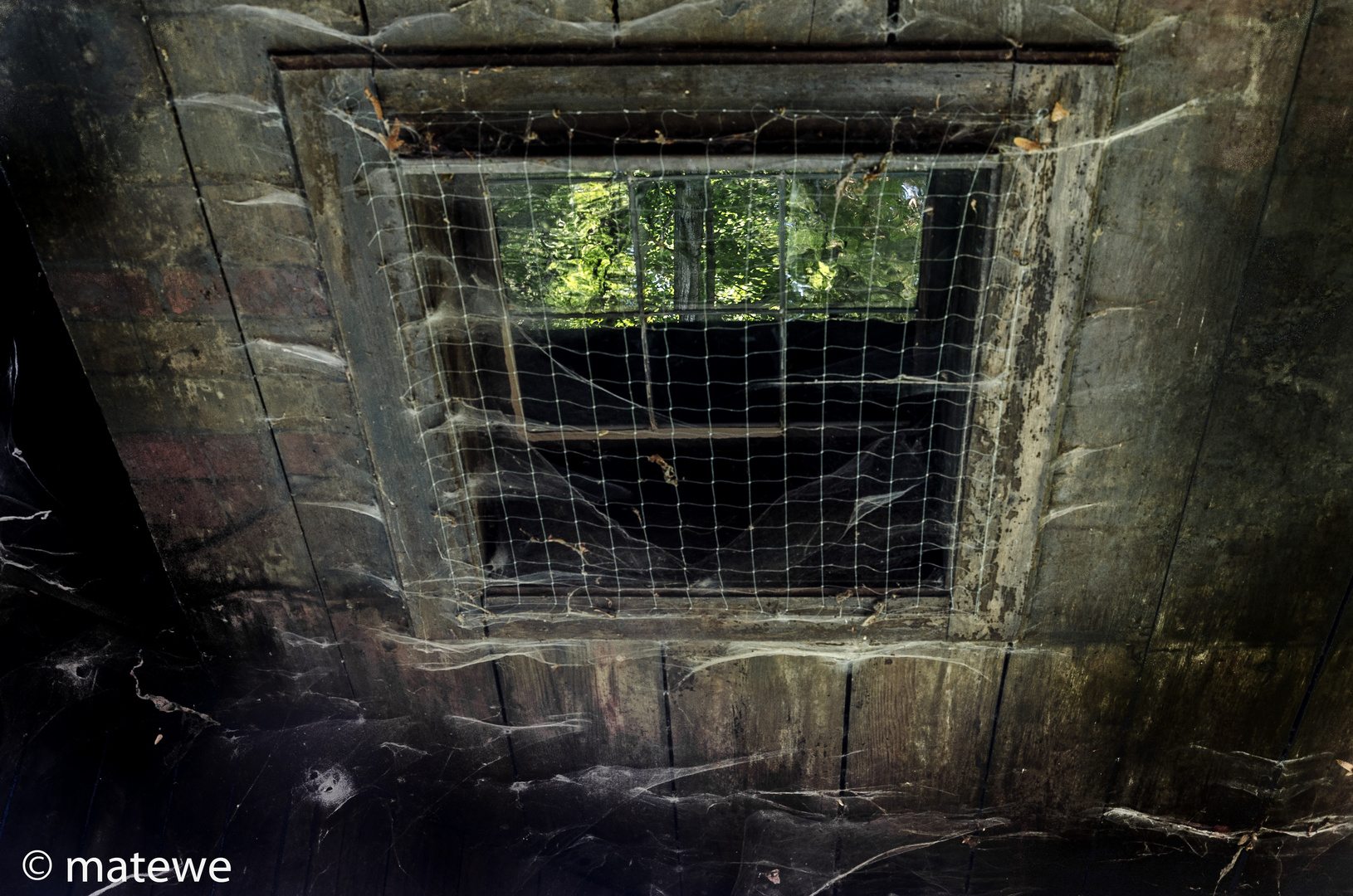 Fenster zum Geisterhaus