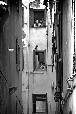 Chioggia fotos bilder auf fotocommunity for Fenster zum hof