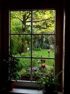 Fenster zum Hof II