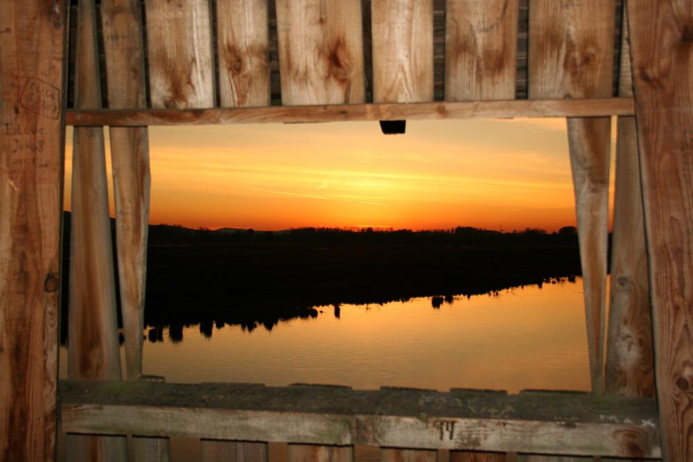 Fenster zum Moor